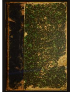 Sylloge Fungorum Omnium Hucusque Cognitorum: Tomo 1
