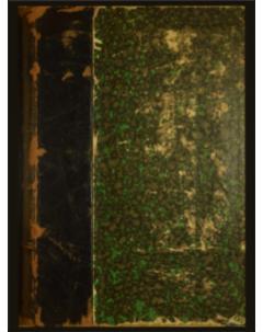 Sylloge Fungorum Omnium Hucusque Cognitorum: Tomo 2