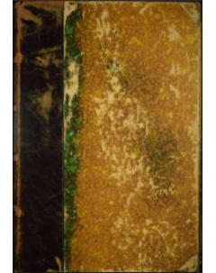 Sylloge Fungorum Omnium Hucusque Cognitorum: Tomo 6