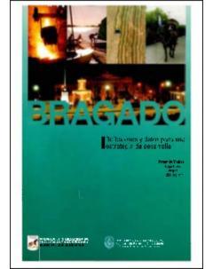 Bragado: Reflexiones y datos para una estrategia de desarrollo