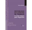 Inestabilidad en el mercado de trabajo: Un análisis dinámico para Argentina