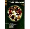 Plan Estratégico Tres Arroyos: Modelo de desarrollo: ejes estratégicos, programas, medidas, acciones